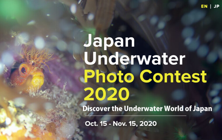 """Japan Underwater Photo Contest 2020"""