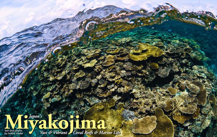 "Miyakojima ""Vast & Vibrant Coral, Reefs & Marine Life"""