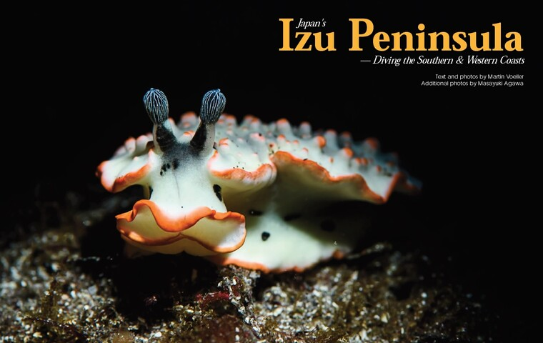 Japan's Izu Peninsula: Diving the Southern & Western Coasts