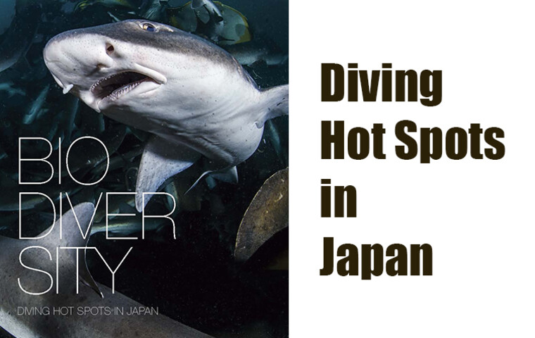 Bio Diversity Diving Japan  WEB Magazine