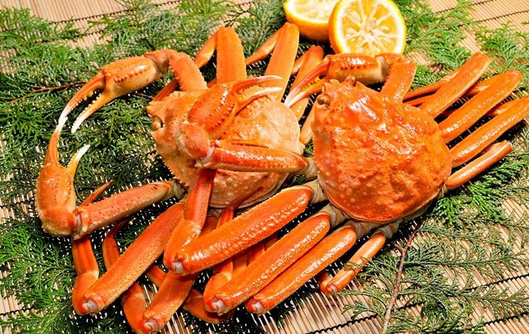 For a Winter Delicacy, Look No Further Than the Zuwai-gani Snow Crab!