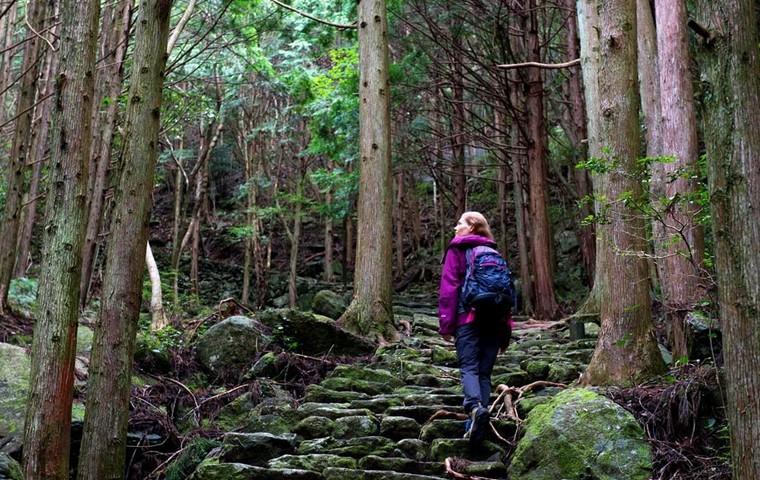 Kumano Kodo – A Holy Hiking Experience