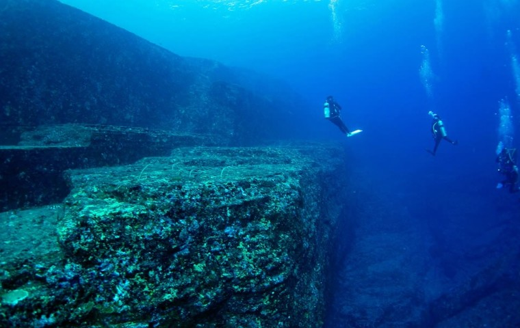 Dive into the waters of Yonaguni Island and discover its wonderful sea creatures