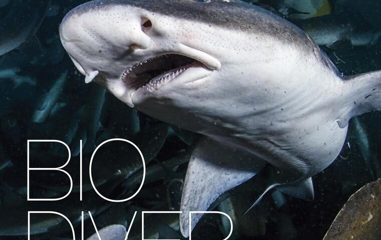 Bio Diversity Diving Spots Japan Page 1