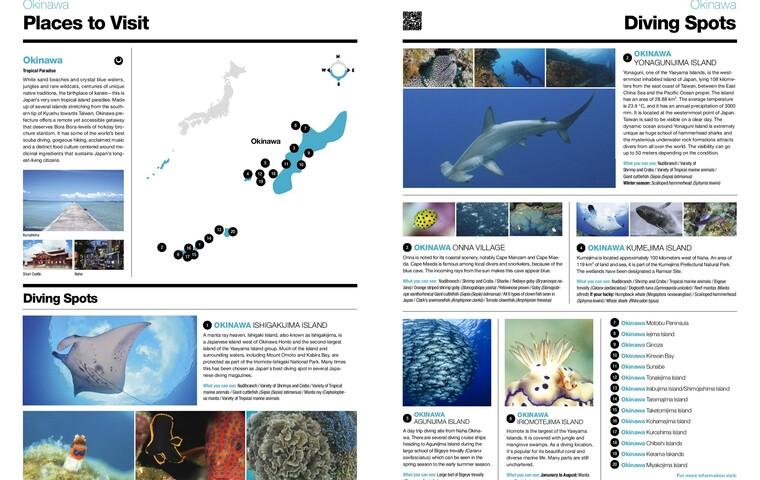 Bio Diversity Diving Spots Japan Page 11