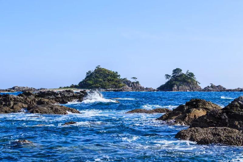 Kushimoto's Hashigui Rocks